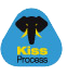 technologie-kiss-process-icon